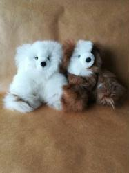SMALL SEATED BEAR- 6PACK
